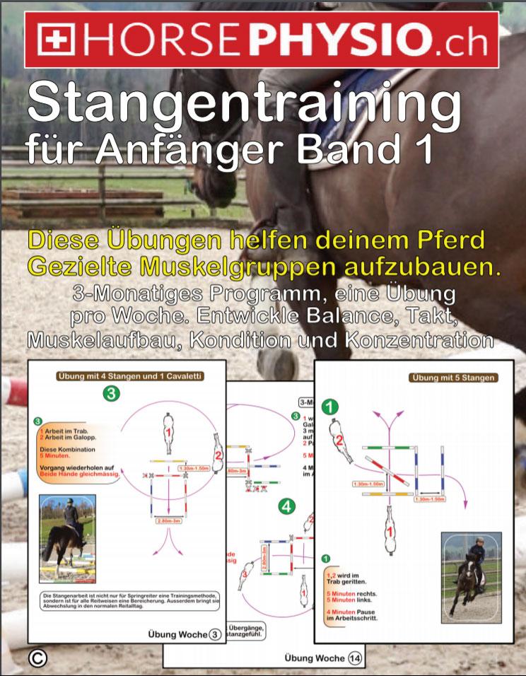 Stangentraining für Anfänger Band 1 (ebook)