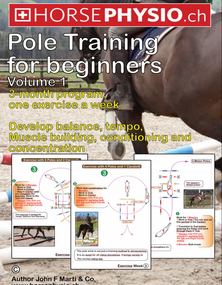 Pole Training Volume 1 for beginners (ebook)