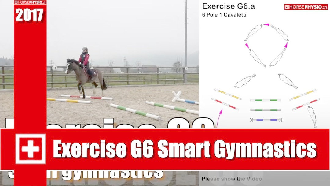 Exercise G6 Smart Training