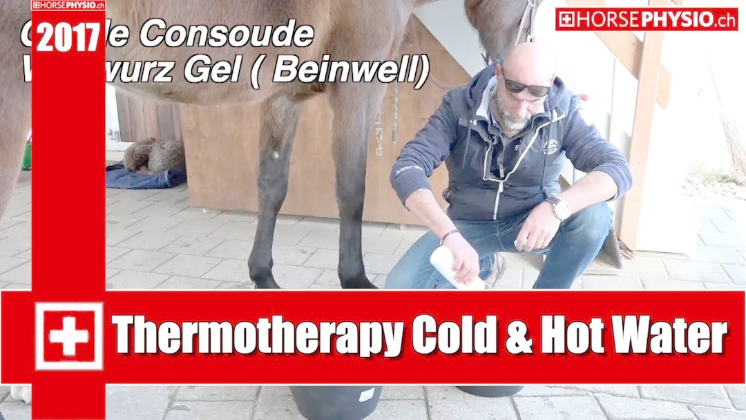 Thermotherapy Tendons and Ligament