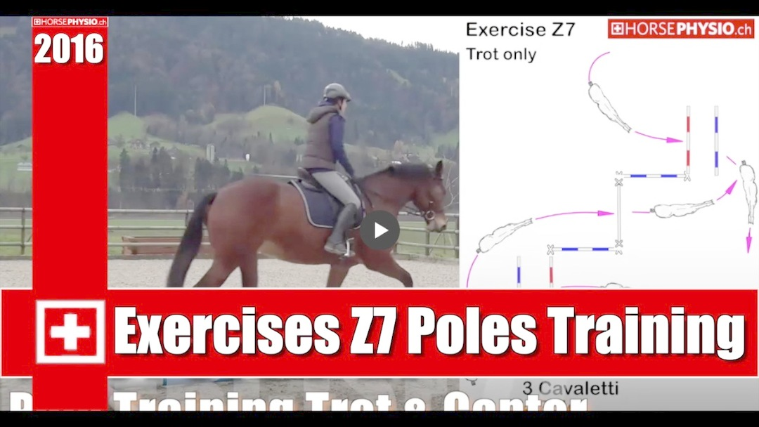 Exercise Z7
