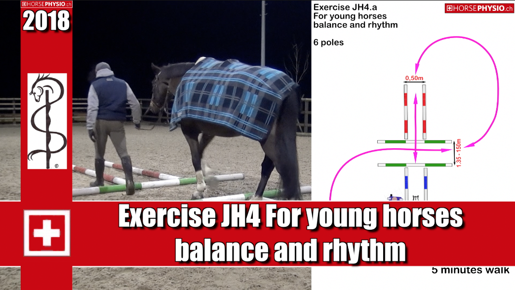 Exercise JH4 for Young Horses