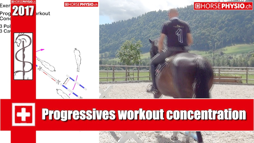 Exercise K30 Workout Concentration