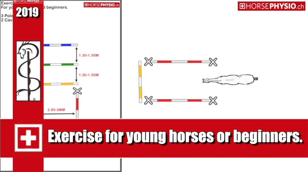 Exercise with 2 Cavaletti 3 poles for young horses or beginners.
