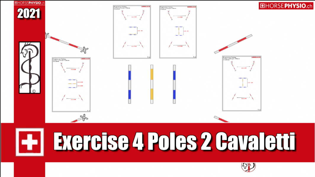 Improve your canter cadence